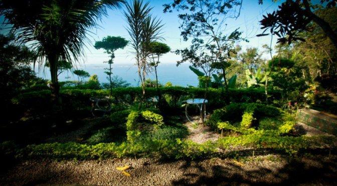 Lixão é transformado em parque ecológico com mutirão